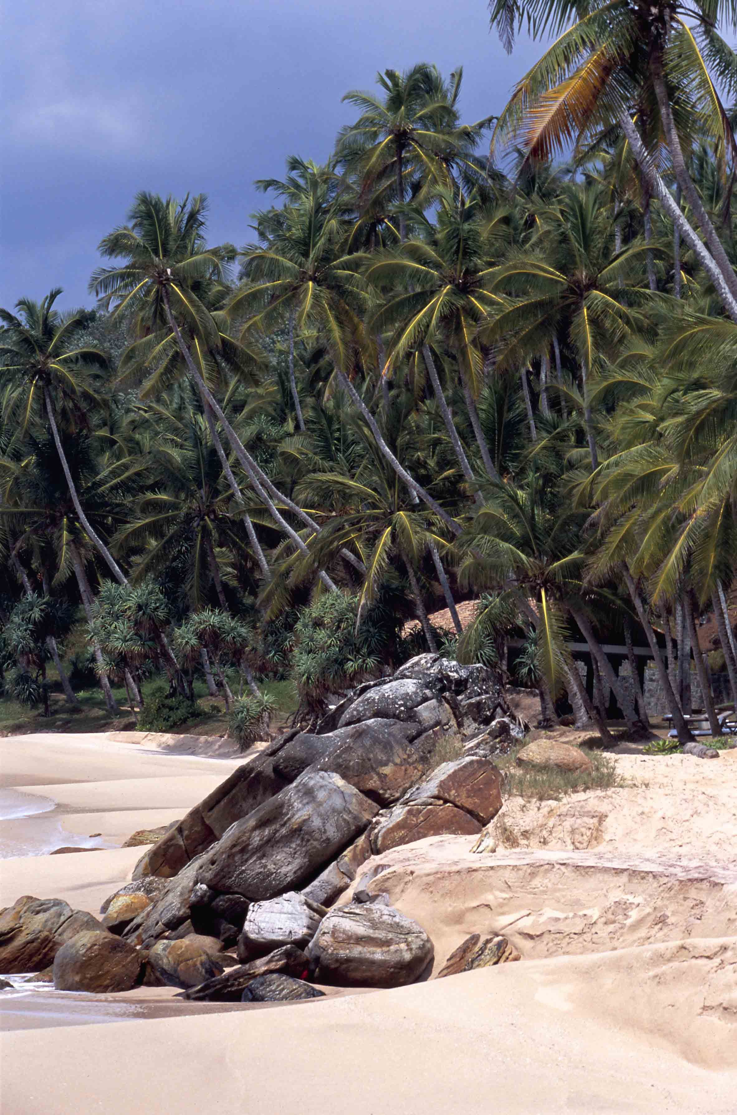Six hours south of Colombo, Sri Lanka's most beautiful beach is the private reserve of Aman guests and the odd fishing boat.