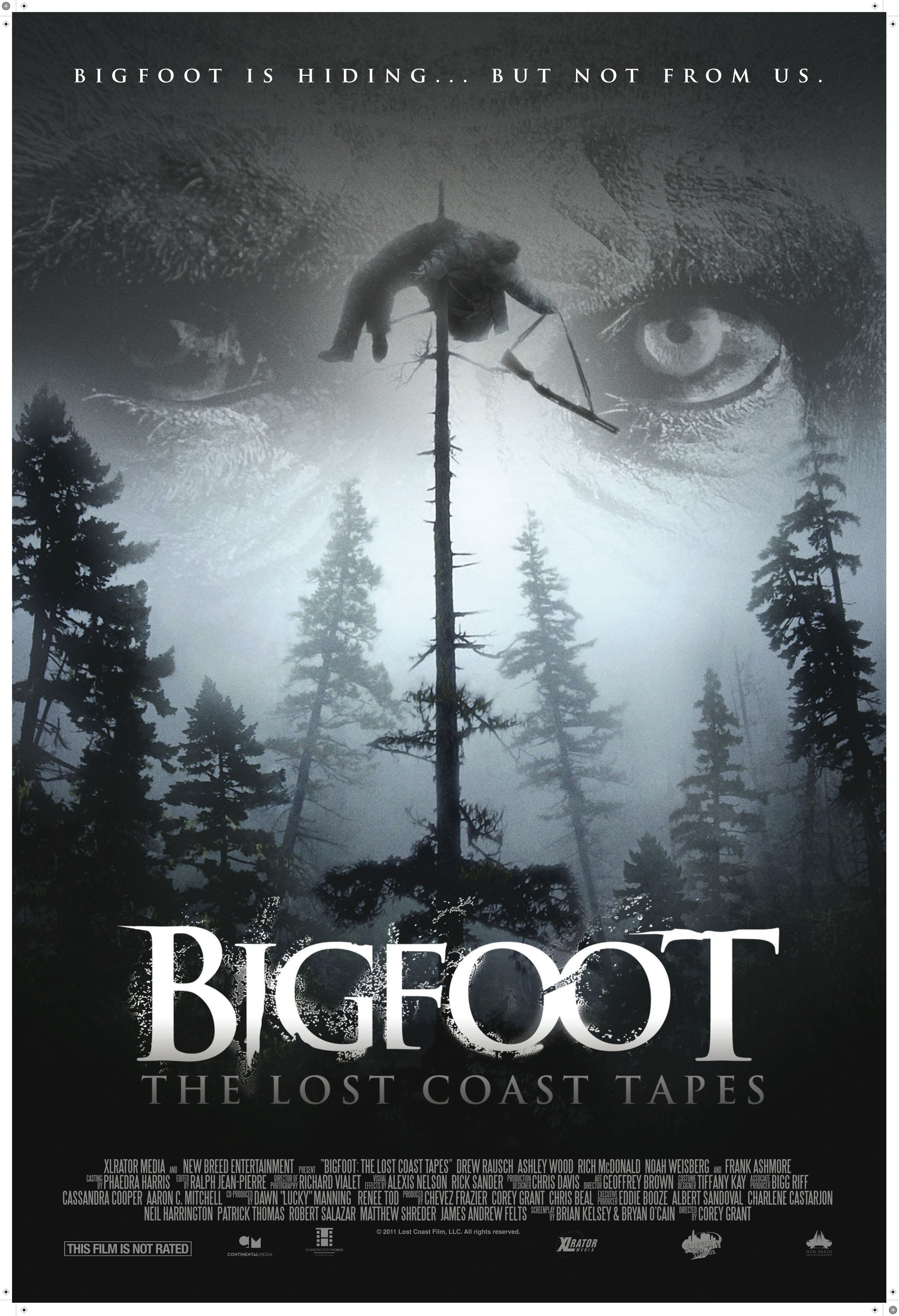 Bigfoot The Lost Coast Tapes Bigfoot movies, Movie