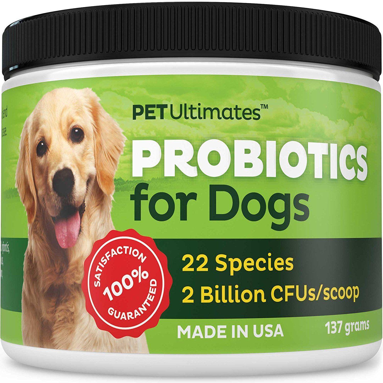 Amazon Com Pet Ultimates Probiotics For Dogs 137 Grams Pet