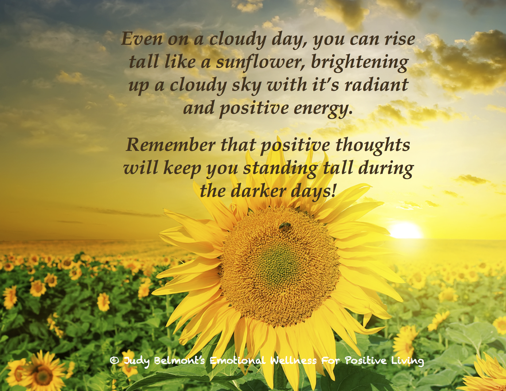 Think Sunny Thoughts On A Cloudy Day! For More Daily