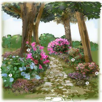 Projet Aménagement Jardin : Jardin D'Ombre Hortensia À Fleurs