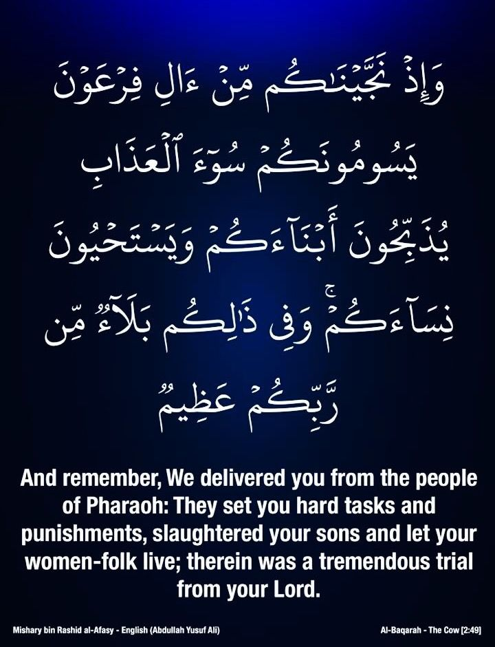 ٤٩ البقرة ٢ سورة البقرة Holy Quran Quran Holi