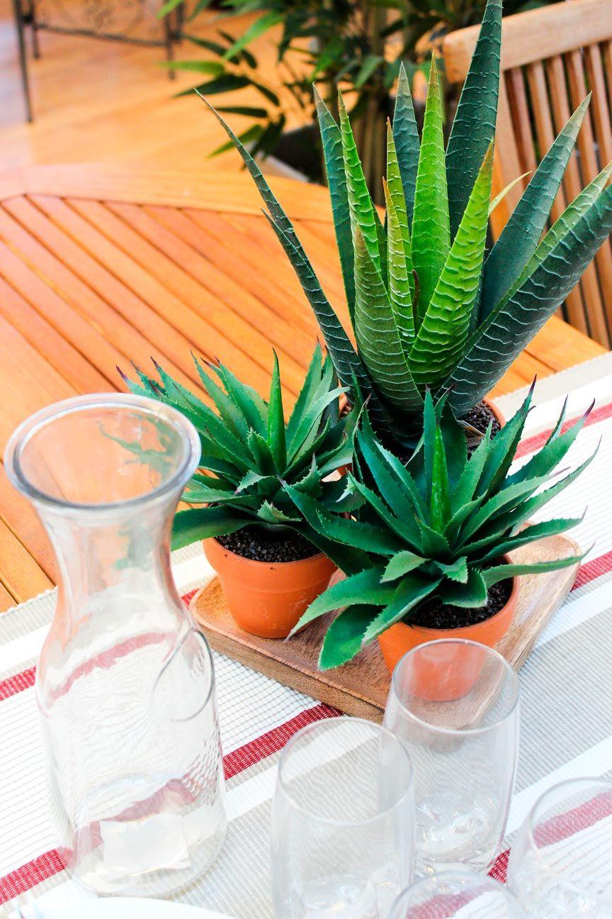 Pin de irene en jardines jardines vivero de plantas y plantas - Arboles artificiales madrid ...