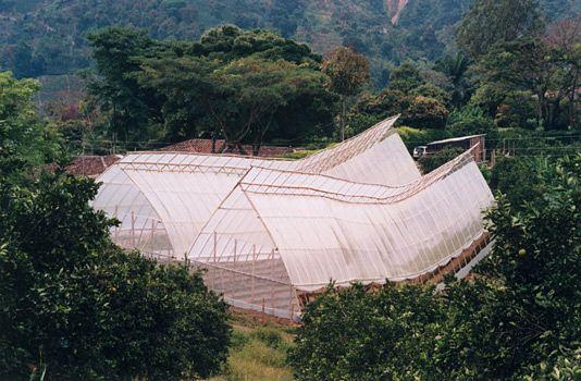 Invernaderos en guadua. Marcelo Villegas (CO)