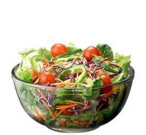 17 day diet cycle 1 recetas