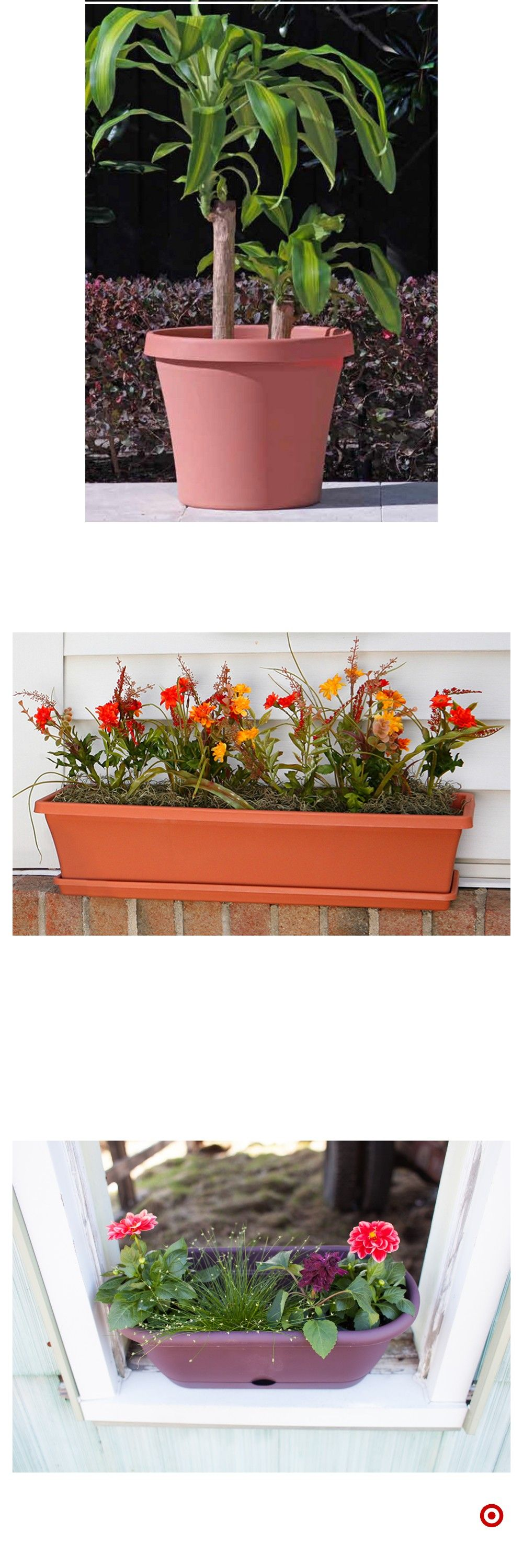 Shop Target for planters you will love at great low prices