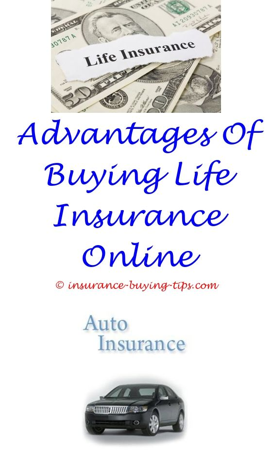 Free Insurance Quote Brilliant Finance A Car Free Insurance  Travel Insurance Online Decorating Inspiration