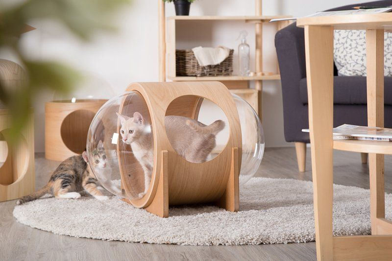 Pin By Luda Macfall On Cats Dogs Cat Bed Wooden Cat House Modern Cat Bed