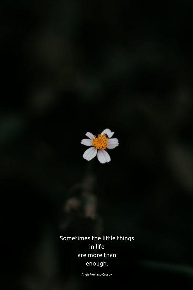 Time for Stillness
