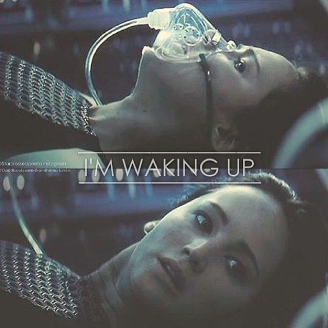 Warriors Imagine Dragons Hunger Games: Hungergamesexplorere>>>>> To Ash And Dust... (yes I Just