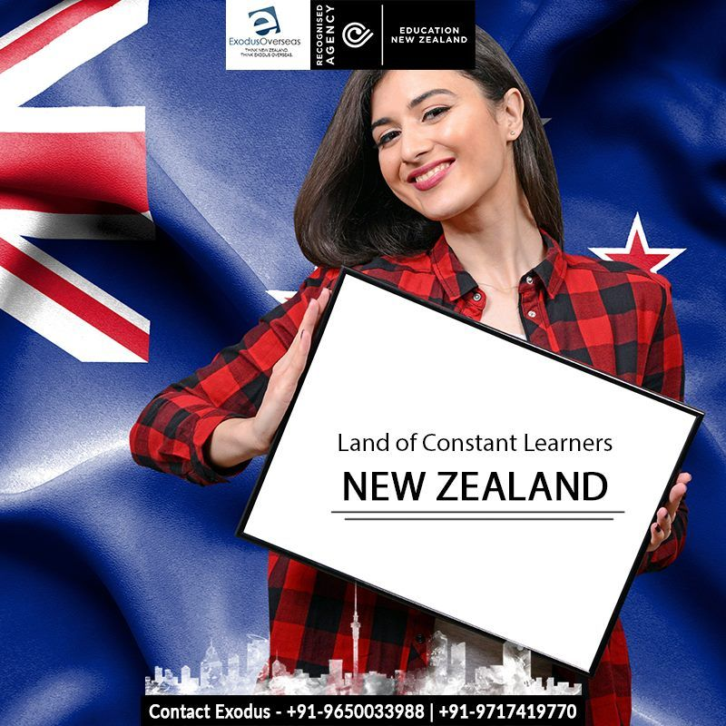 Study In Nz To Gain Job Ready Practical Skills Study For 1 Year