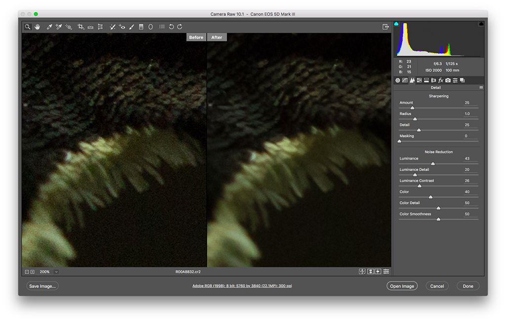 Noise Reduction Tools In Lightroom Photoshop And Beyond Digital Photo Magazine Lightroom Photoshop Digital Photo