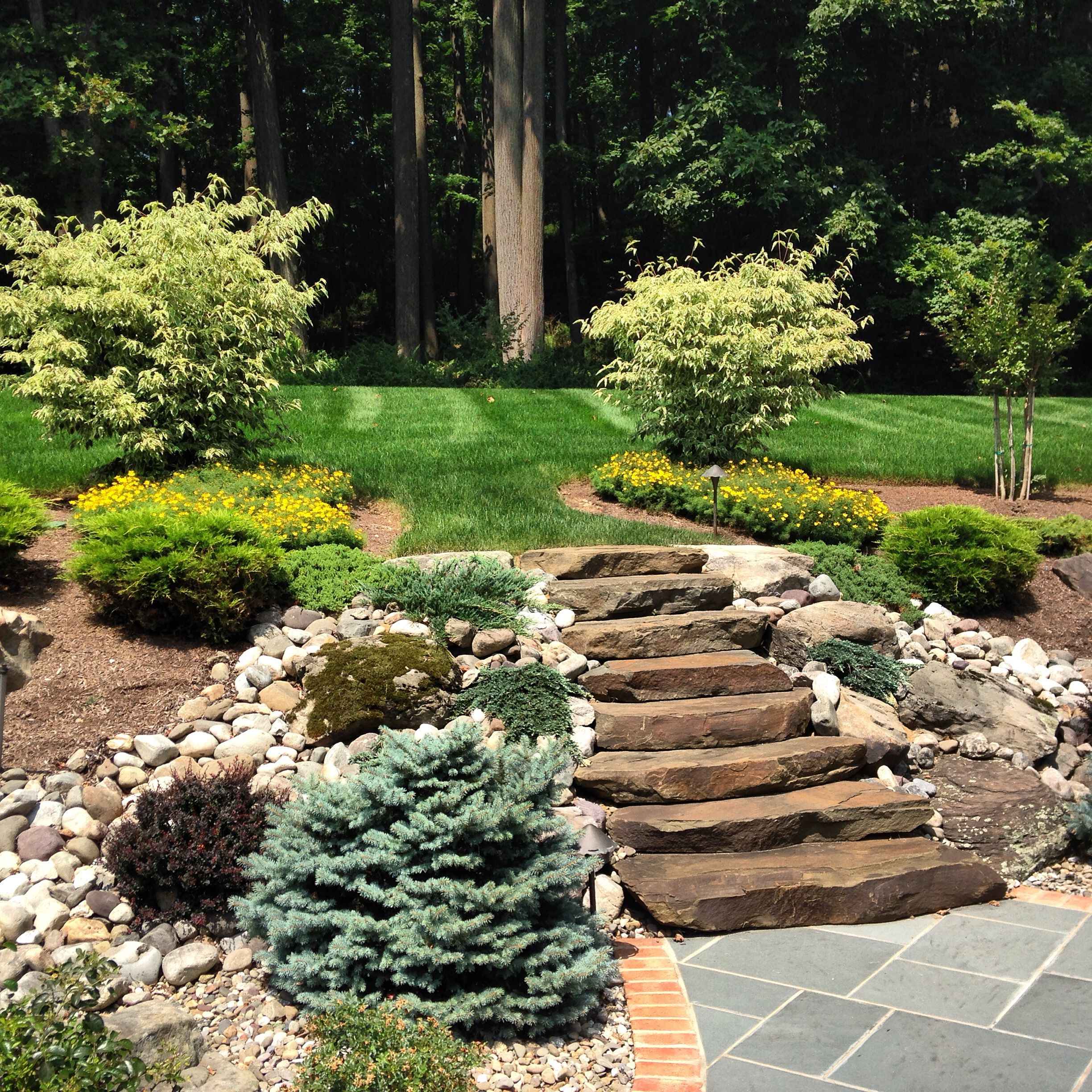 Natural Stone Steps Mixed With Boulders Leading Up From Bluestone Patio 973 476 4863 Landscaping With Rocks Patio Stones Backyard Landscaping