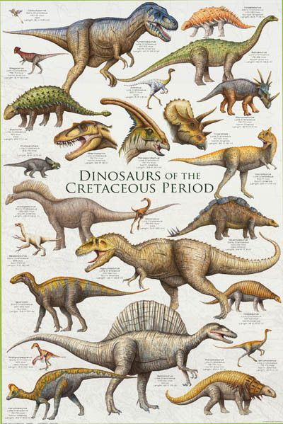 Dinosaurs Of The Cretaceous Period Poster 24x36 Dinosaur Posters Dinosaur Prehistoric Dinosaurs