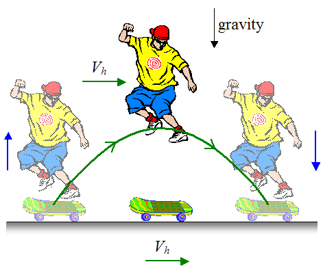 Physics of the Ollie Skateboard Move - Words | Help Me