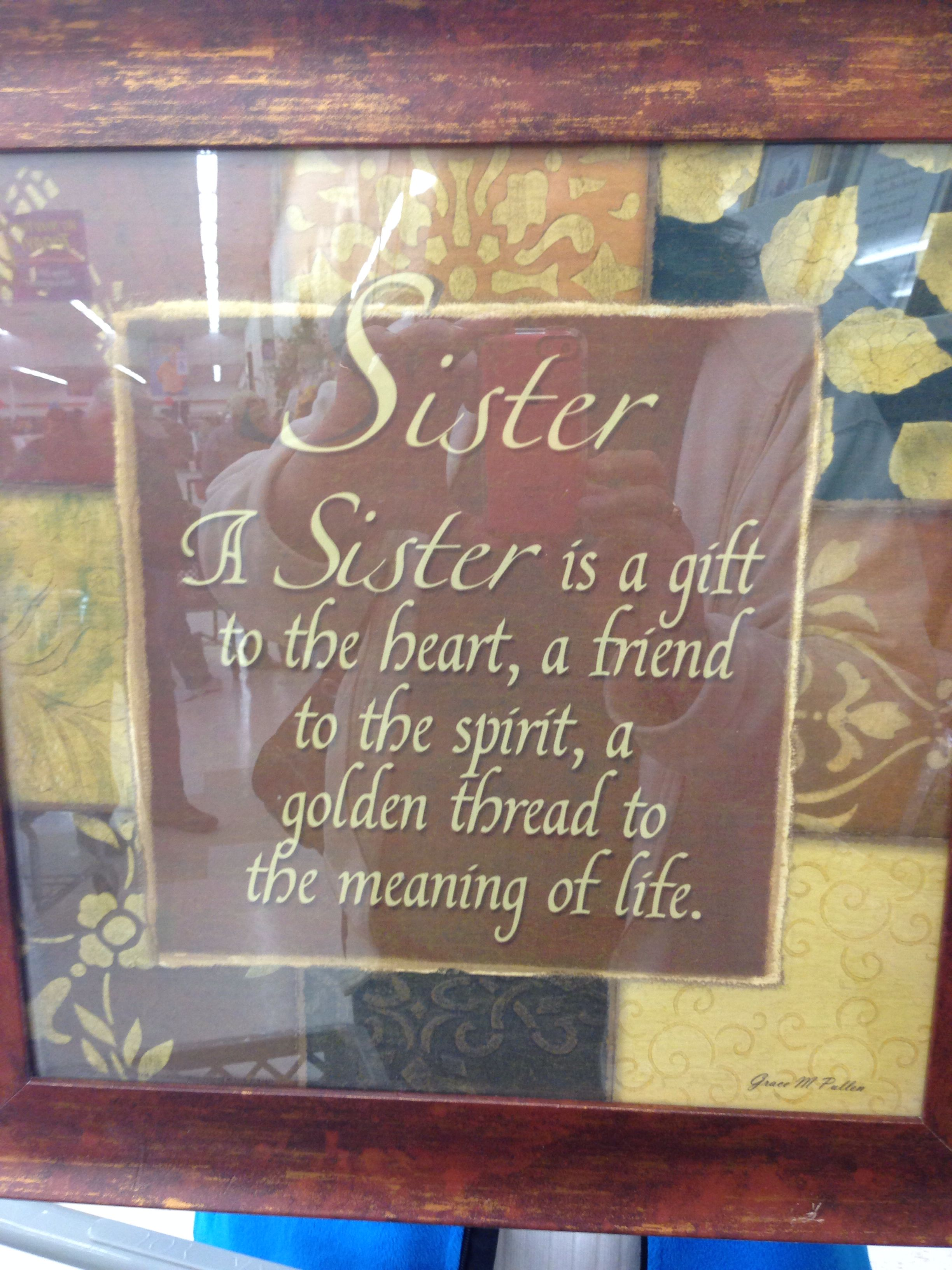 Saw this at Good Will and thought of my sister Robin!