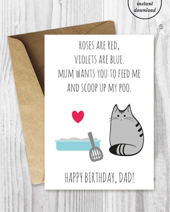DIY For Him Birthday Card Printable Dad UK Funny Cat Husband Boyfriend