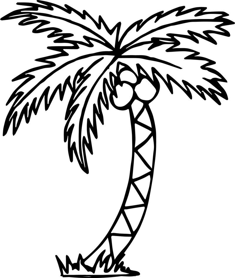 Summer Tree Beach Coloring Page Beach Coloring Pages Tree Coloring Page Flower Coloring Pages