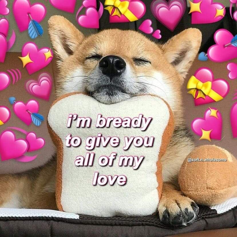 30 Wholesome Memes For Anyone Having A Bad Day Or In Need Of Love Sweet Love Memes Cute Love Memes Cute Memes