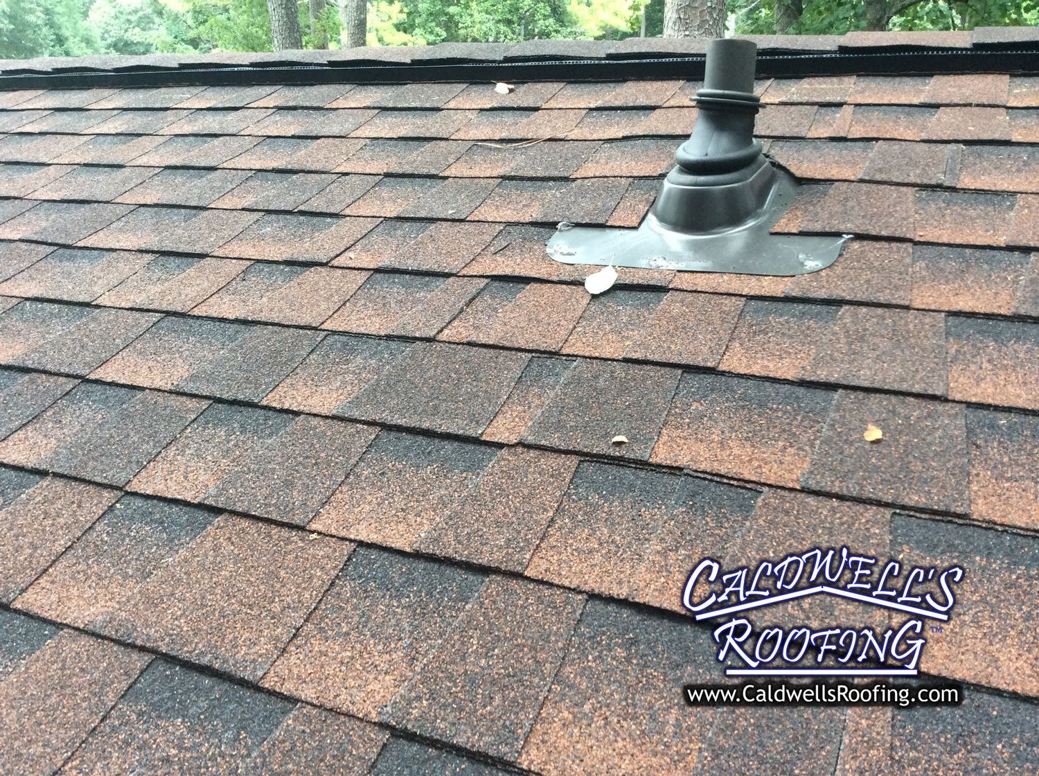 Asphalt roof shingles colors roofing shingles for Different types of roofing materials