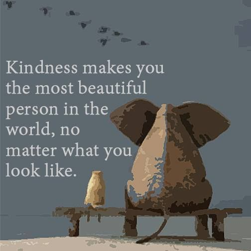 Quotes About Kindness Stunning Quoted Quotes Kindness Pretty True That Cruelty Is Very Repulsive