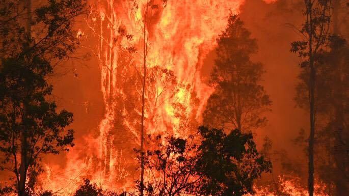 Australia burns Album on Imgur in 2020 (With images