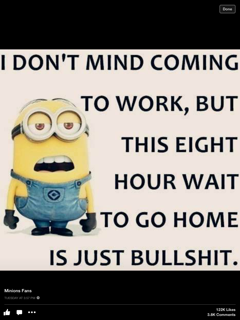 Top 25 Funny Minion Work Quotes Minions Funny Funny Minion Pictures Funny Minion Quotes