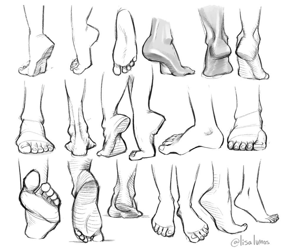 Pin by thor hindes on Draw Me ;) | Pinterest | Draw, Anatomy and Art ...
