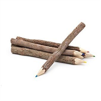 Twig coloured set of pencils set of 6