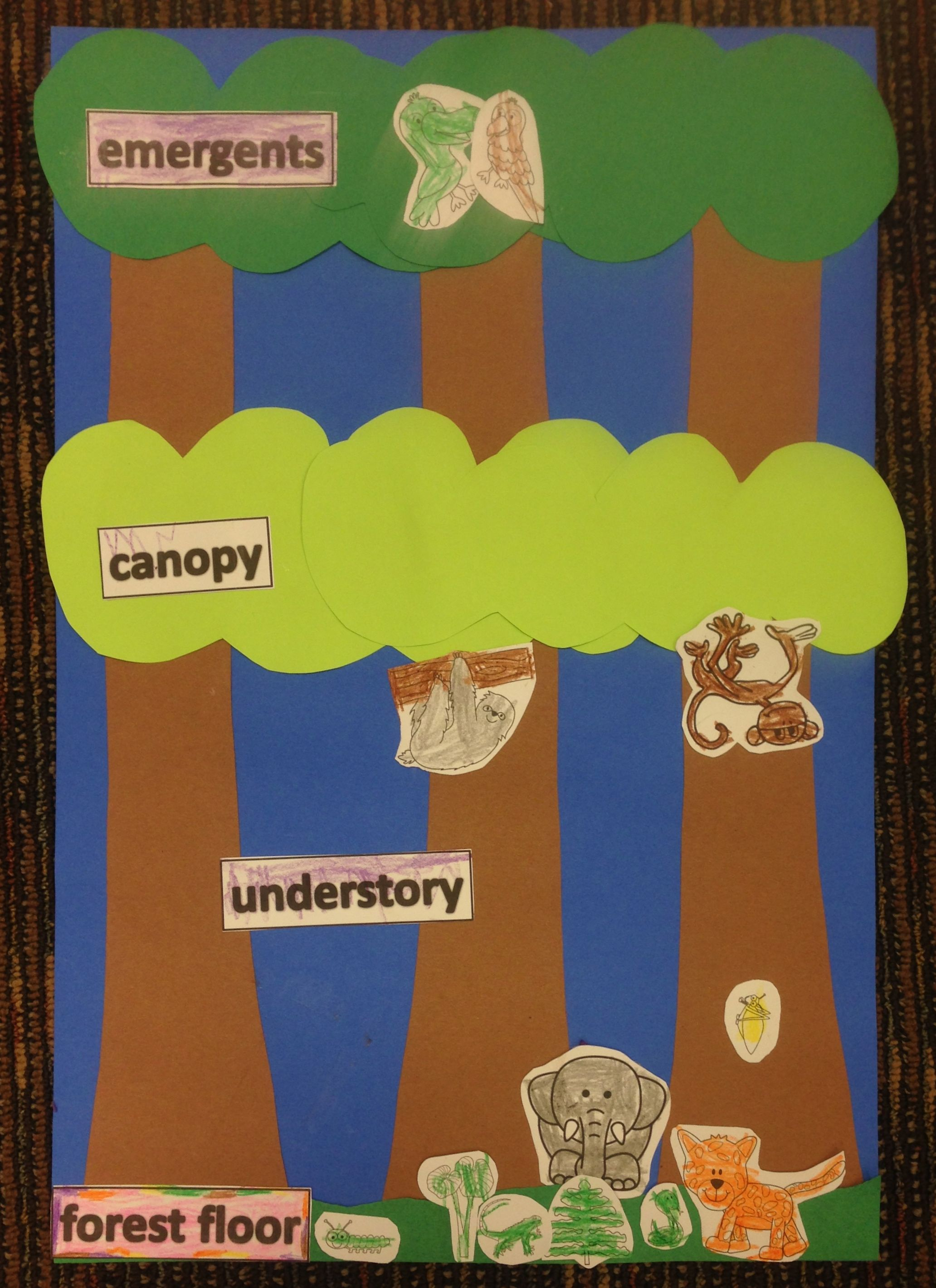 rainforest craft ideas for kids rainforest theme layers of the forest craft www 7086