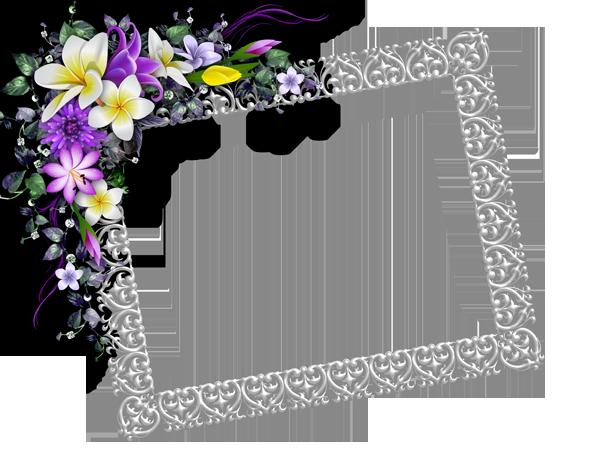 صور شهادات شكر وتقدير نموذج شهادة تقدير وشكر فارغ ميكساتك Pink Wallpaper Iphone Free Art Prints Flower Frame