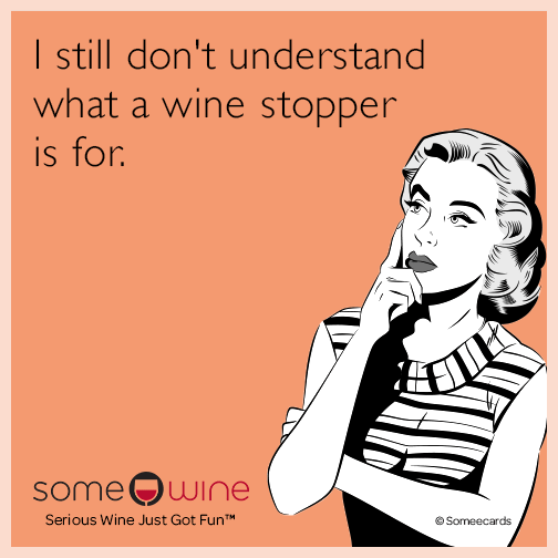 I Still Don T Understand What A Wine Stopper Is For Wine Jokes Wine Humor Wine Quotes