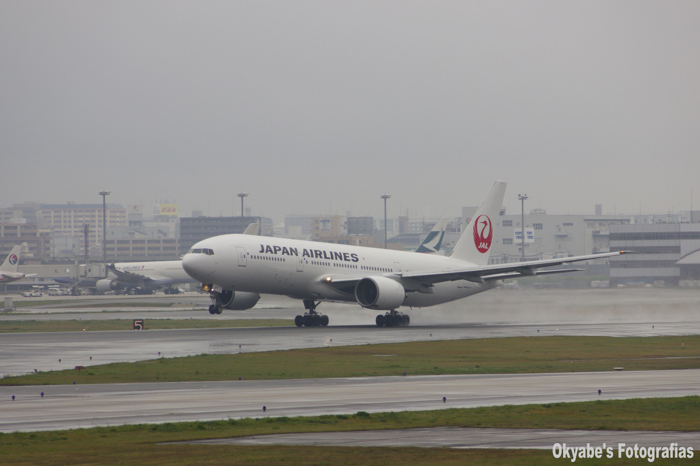 Take off. (Japan Airlines B777 )