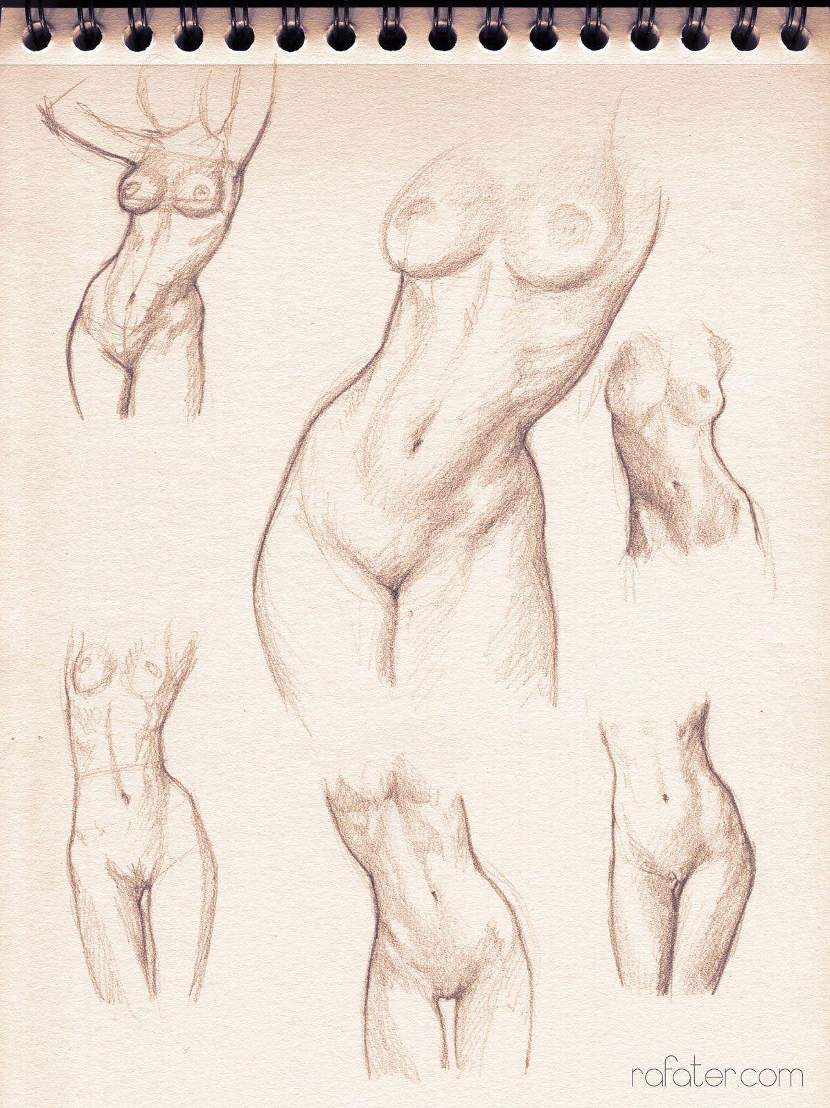A Fantastic Fuck Ton Of Female Anatomy References From Various