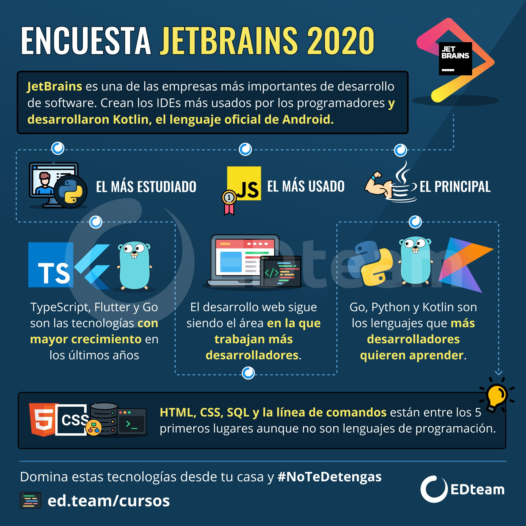 Encuesta Jetbrains 2020 Lenguaje De Programacion Informatica Programacion Programacion Orientada A Objetos