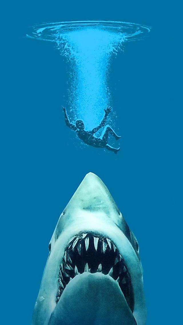 The downside of jumping off your boat to swim!! Shark
