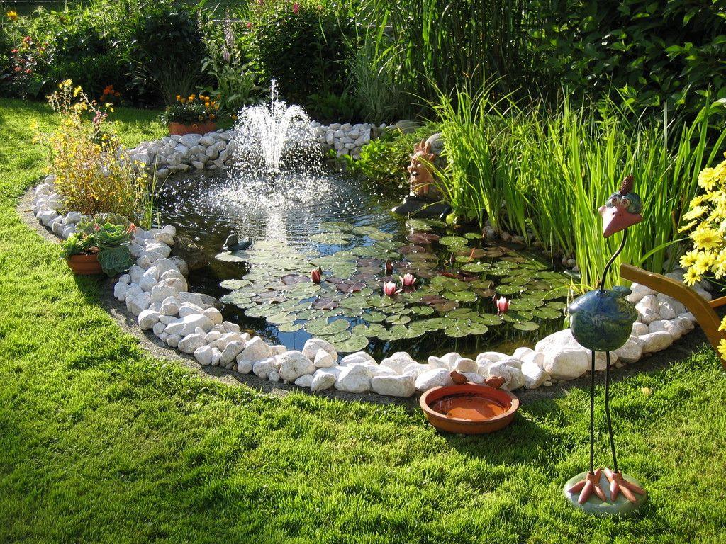 Ein schräger Vogel   Gartenteich, Gartenteich bilder, Garten