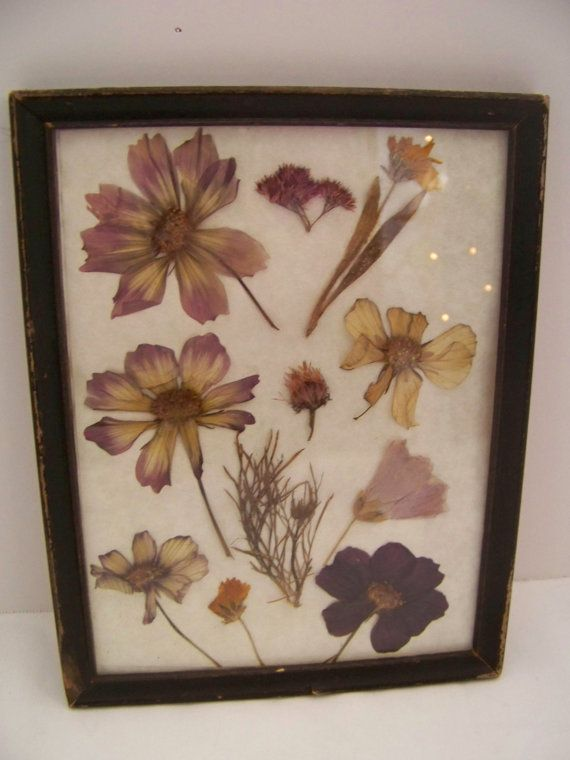 pressed flower picture frame. For when your boyfriend/husband gives ...