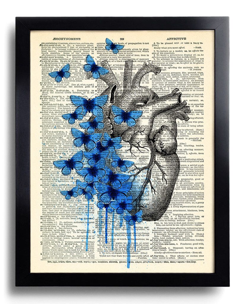 Heart Human Anatomy Butterfly Anatomical Heart Print on Vintage ...