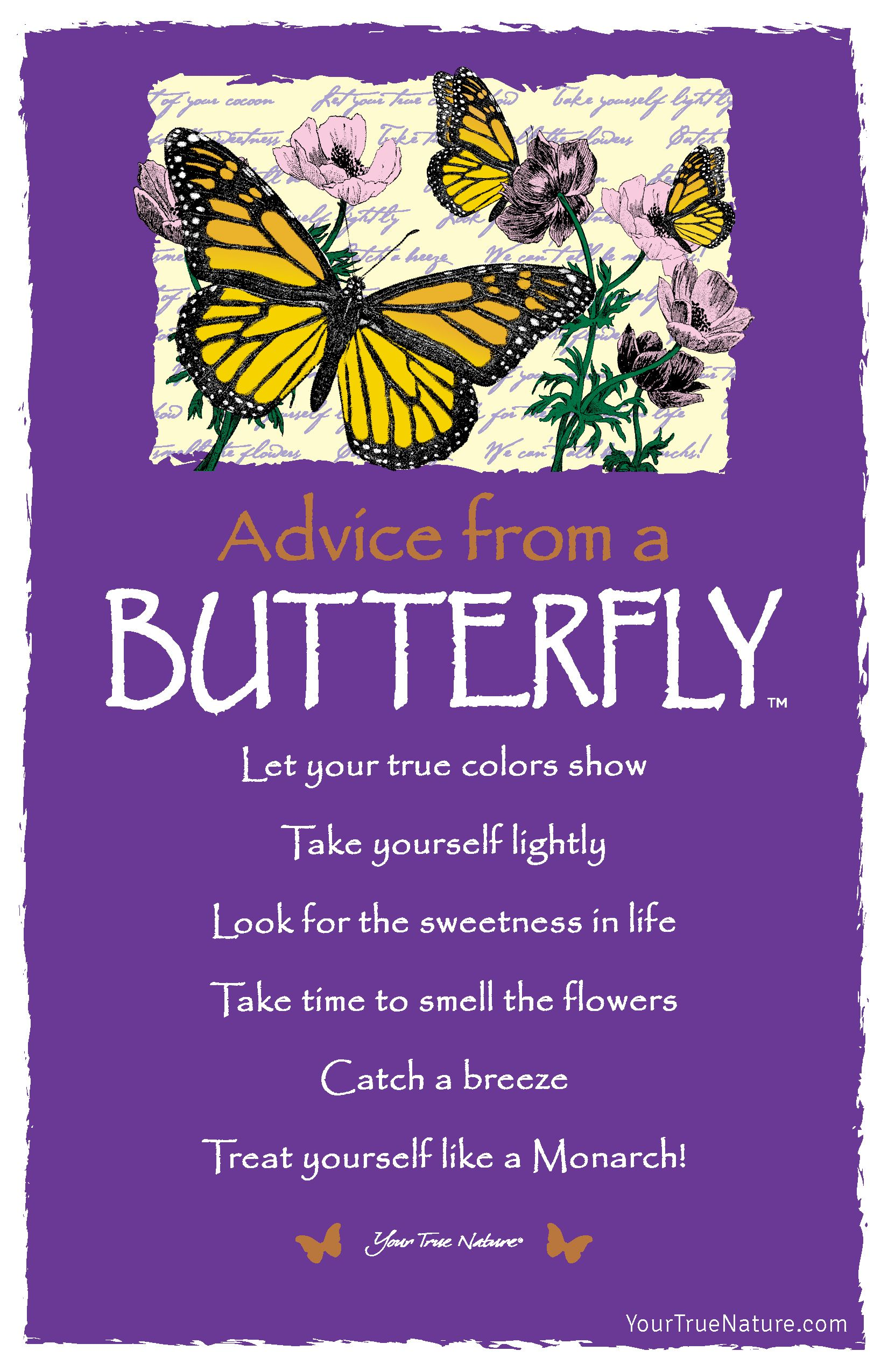Take Time To Smell The Flowers Butterfly Butterfly Quotes Dragonfly Quotes Advice Quotes