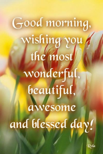 Blessed Day Quotes Pin by Joy Mayfield on Tinkerbell | Morning quotes, Good morning  Blessed Day Quotes