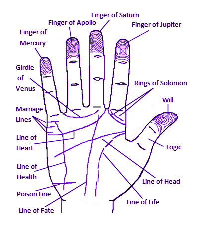 Chinese Palmistry - Chinese Astrology