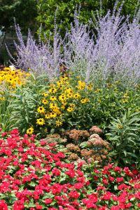 Cottage Garden Ideas Garden ideas and Gardens