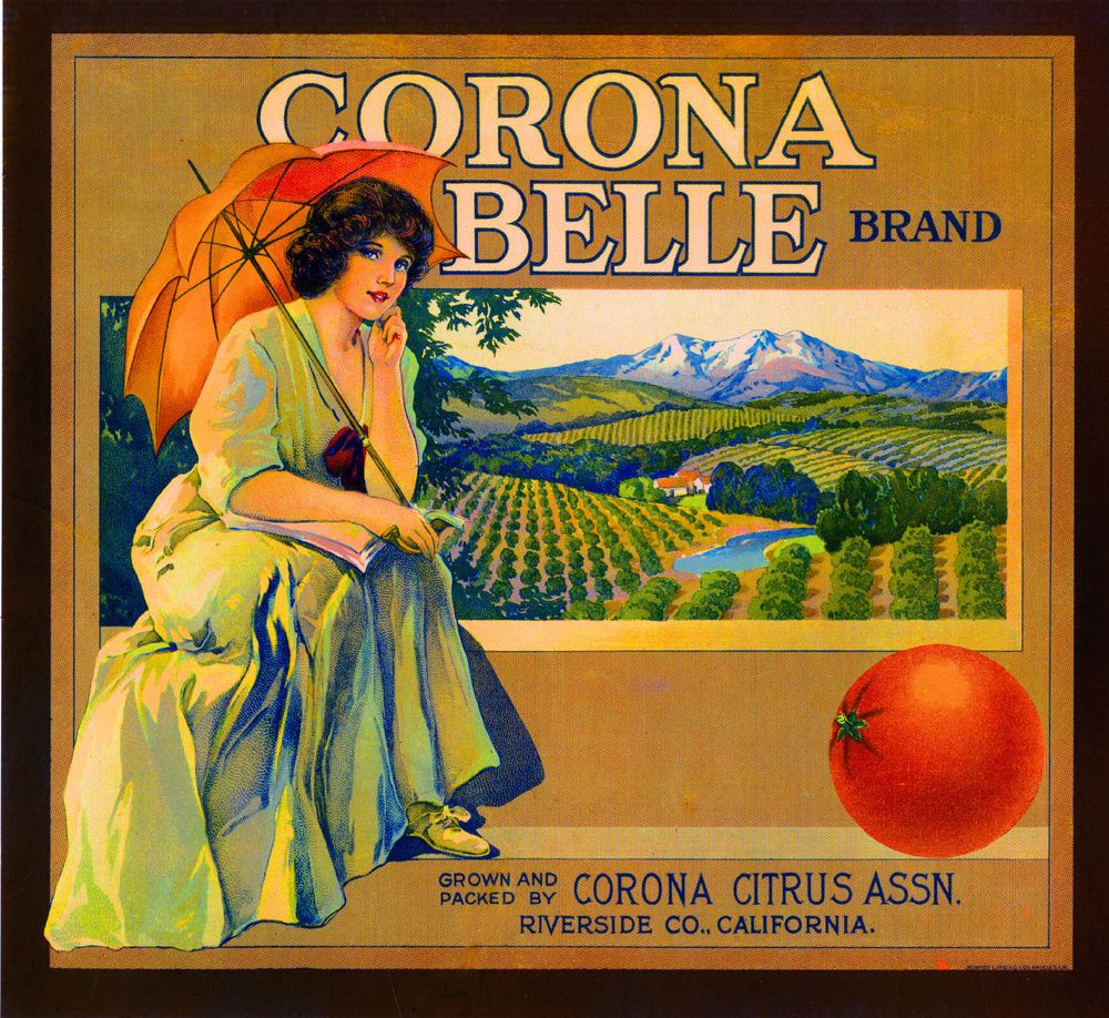 Riverside Anita Spanish Girl Birds Orange Citrus Fruit Crate Label Art Print