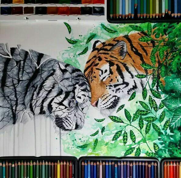Sad and happy tiger · watercolor pencil artcool
