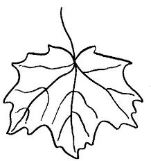 Imagini Pentru Frunze De Decupat Si Colorat Frunze Desene