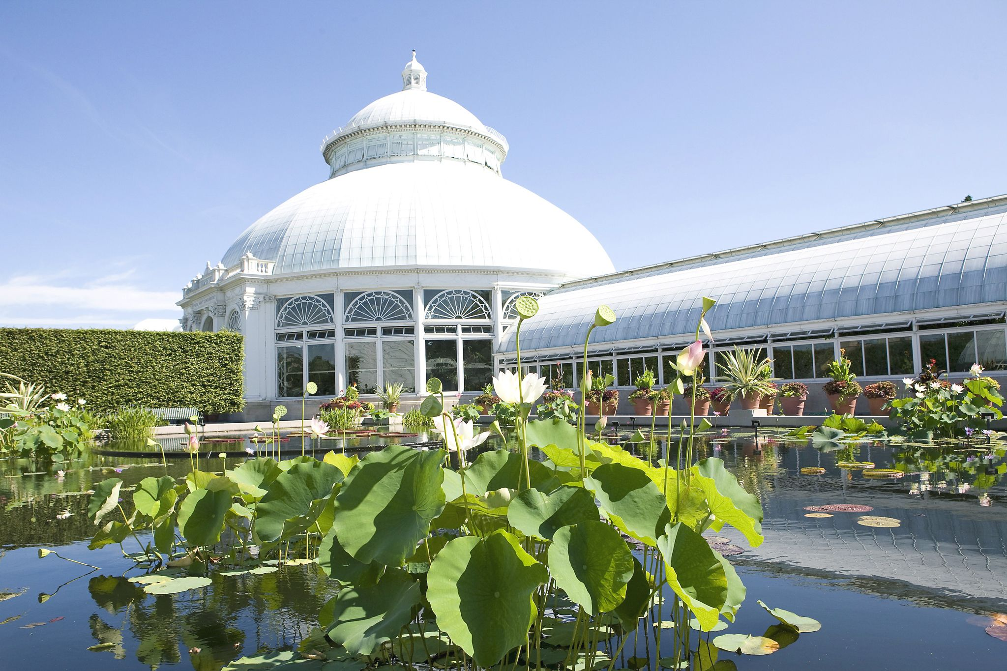 The top attractions in the bronx and staten island the - Bronx botanical garden free admission ...