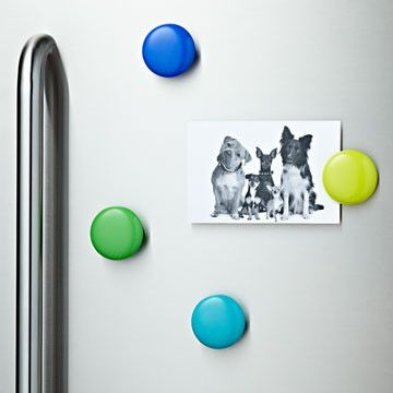 fridge clips that stick to non magnetic surfaces in case we ever get that stainless steel applianceskitchen - Non Stainless Steel Appliances