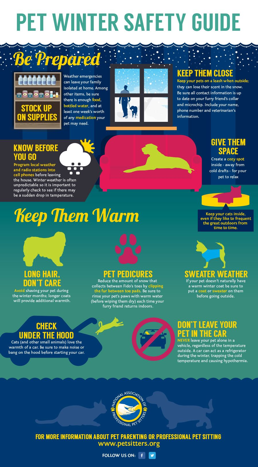 Keep Pets safe and warm this winter! Winter safety, Pets