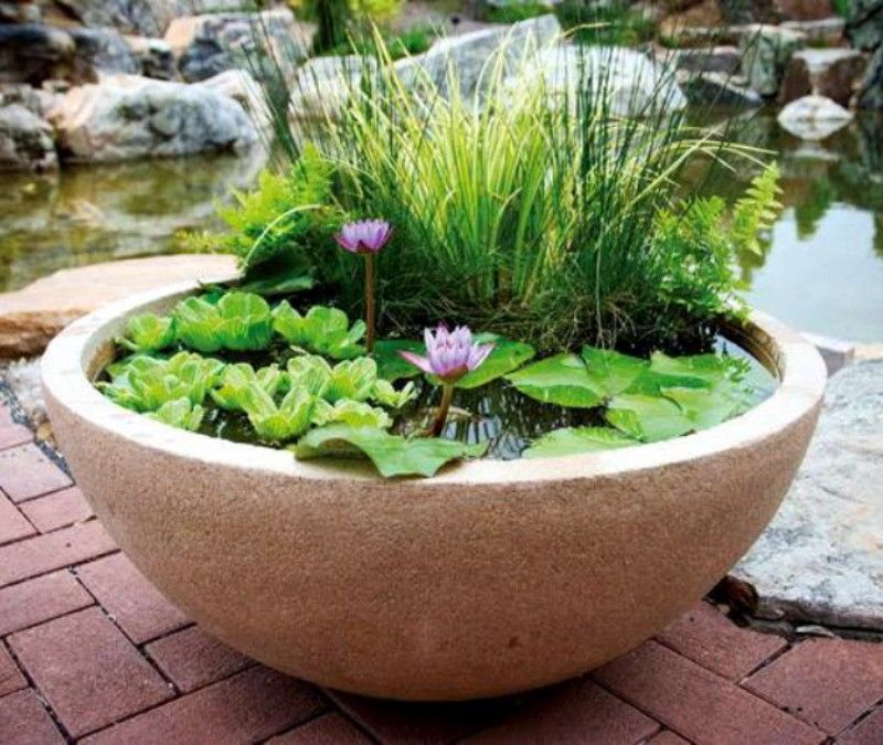 Patio Ponds U0026 Container Water Gardens From Aquascape®